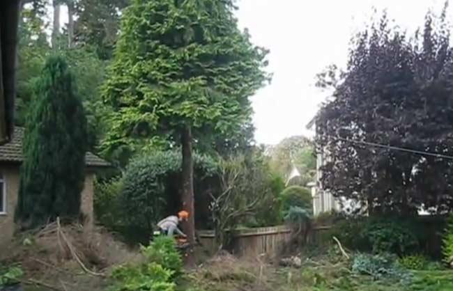 Cheltenham Garden Maintenance