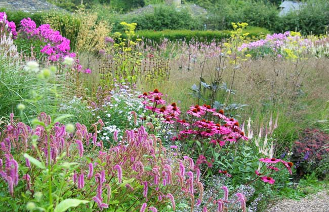 Dove Cottage Nurseries