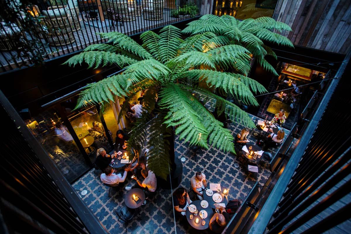 The Mandrake Hotel Award Winning Tropical Garden Courtyard