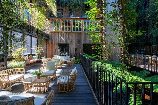 The Mandrake Hotel Award Winning Tropical Garden Design
